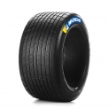 Michelin / Pilot Sport Legends P219