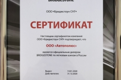 Bridgestone_2020